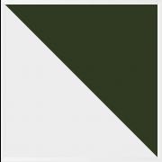 Azulejo Especial Central - Verde Folha - 15.5x15.5 - M²