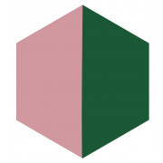 Ladrilho Hidráulico Hexagonal - H7
