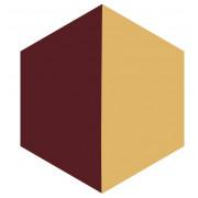 Ladrilho Hidráulico Hexagonal - H 10